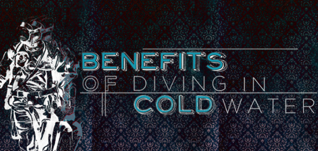 Benefits of diving in cold water